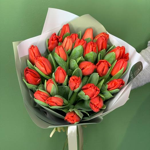 Прекрасные тюльпаны 💔