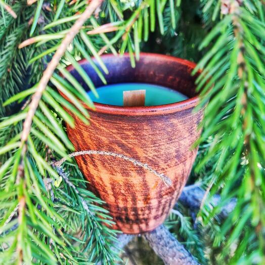 Ароматическая свеча с запахом хвойного леса, 250мл