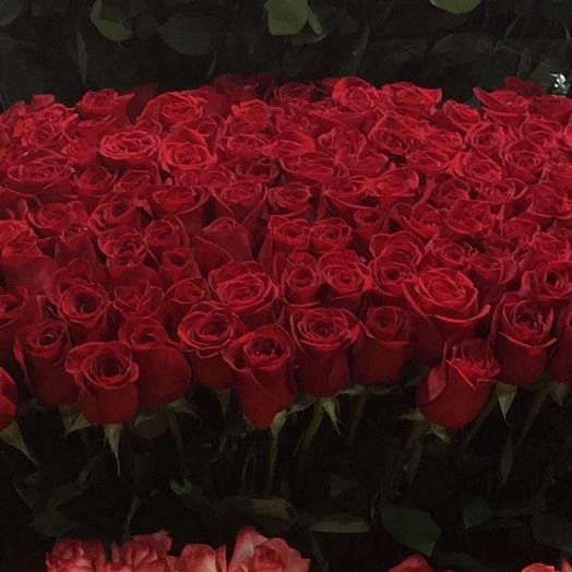 Бархатный рай: букеты цветов на заказ Flowwow