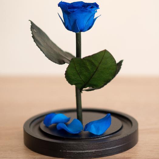 Синяя роза в колбе Мини: букеты цветов на заказ Flowwow