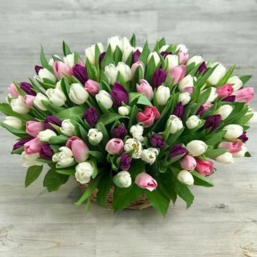 Корзина сортов тюльпанов