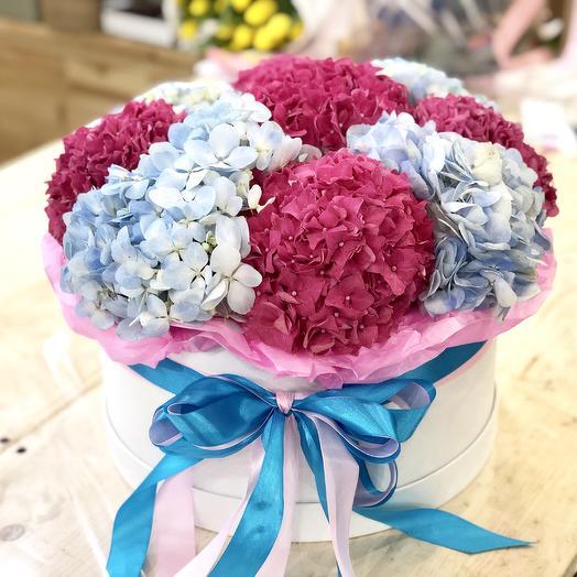 Гортензия Микс в шляпной коробке: букеты цветов на заказ Flowwow