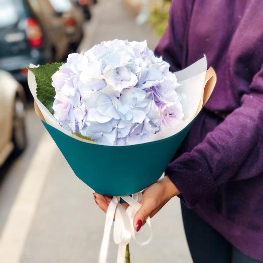 Букет Облако Знаний: букеты цветов на заказ Flowwow