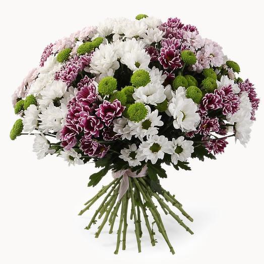 Букет 25 кустовых хризантем МИКС: букеты цветов на заказ Flowwow