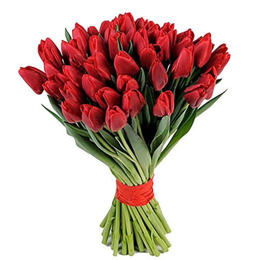 51 красный тюльпан: букеты цветов на заказ Flowwow