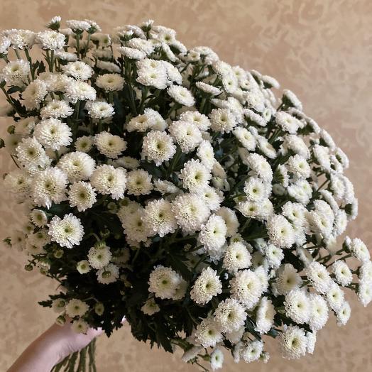 Облако сантини: букеты цветов на заказ Flowwow