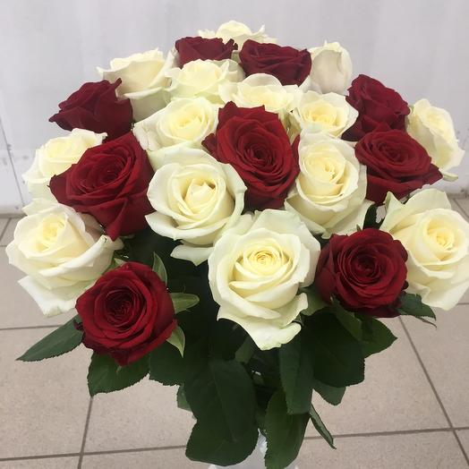 Букет 25 красно-белых роз