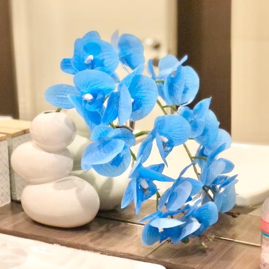 Орхидея синяя в вазе