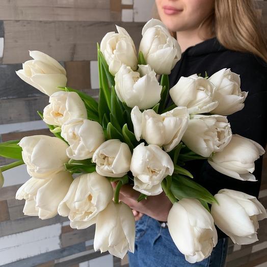 Белоснежный тюльпан