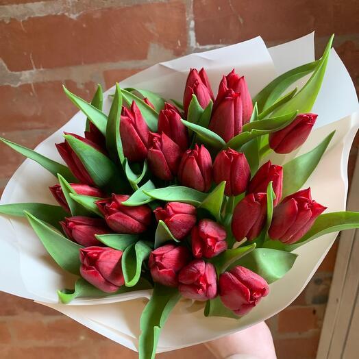 Красные тюльпаны 25