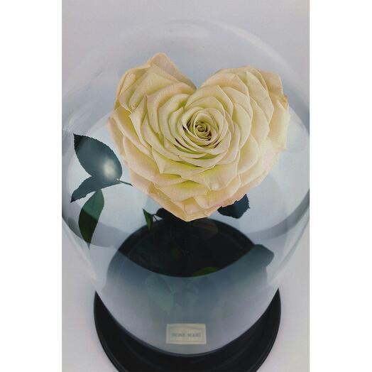 Роза в колбе Сердце жёлто-зелёная 27*15*9см
