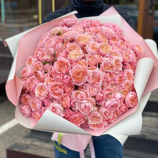 51 пионовидная роза Английская Прима
