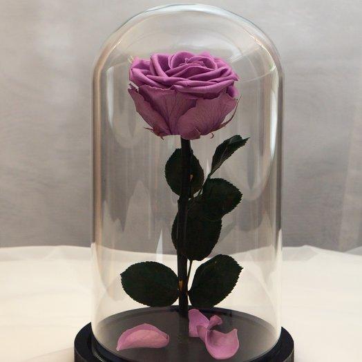 Роза в колбе RozaRose Медиум Сиреневая: букеты цветов на заказ Flowwow
