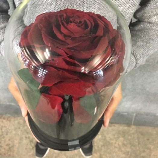 """""""Красавица и Чудовище"""": букеты цветов на заказ Flowwow"""