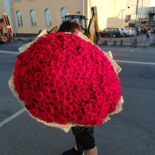 251 red rose - a truly luxurious and memorable bouquet!
