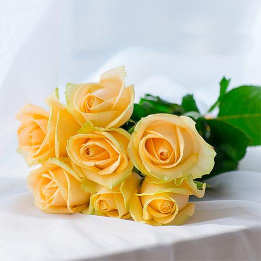 Букет из 7-ми кремовых роз