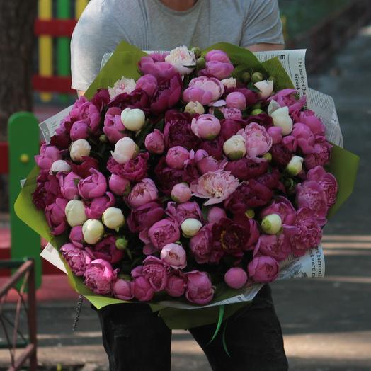 101 пион микс в дизайнерской упаковке: букеты цветов на заказ Flowwow