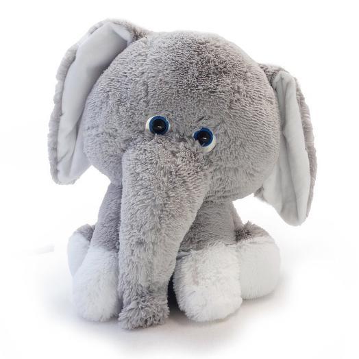 Слонёнок Леон: букеты цветов на заказ Flowwow