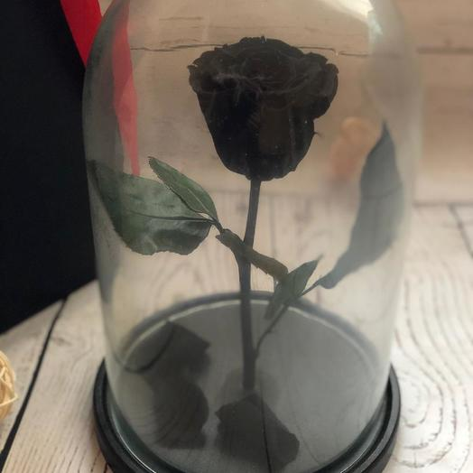 Живая черная роза в колбе: букеты цветов на заказ Flowwow