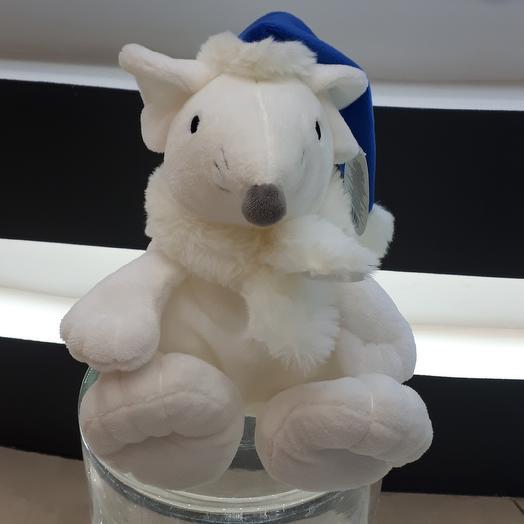Мышь( крыса) в колпаке и в шарфе.  Символ 2020 года