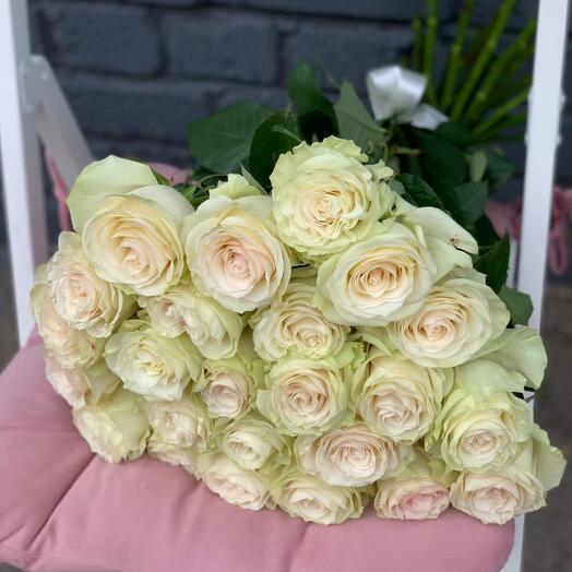 Монобукет 25 Кремовых роз 60см