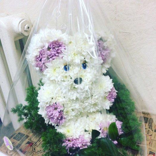 Мишка косолапая: букеты цветов на заказ Flowwow