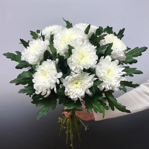 Зембла Белая: букеты цветов на заказ Flowwow