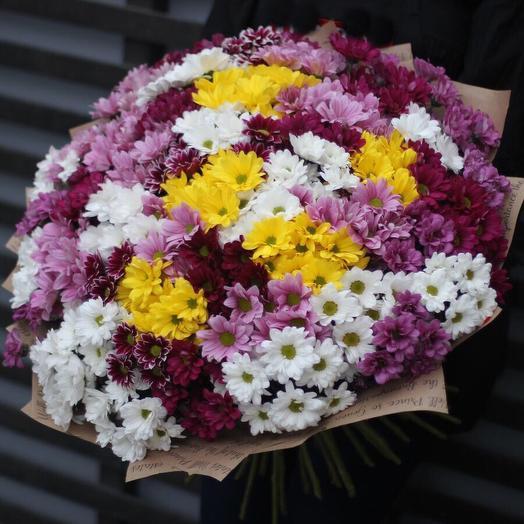Букет из кустовых хризантем 51 шт