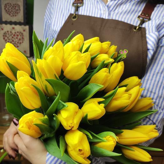 25 Tulip yellow