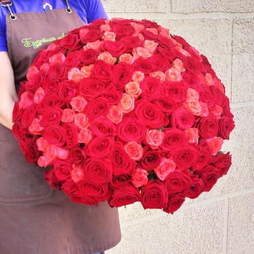 151 роза микс