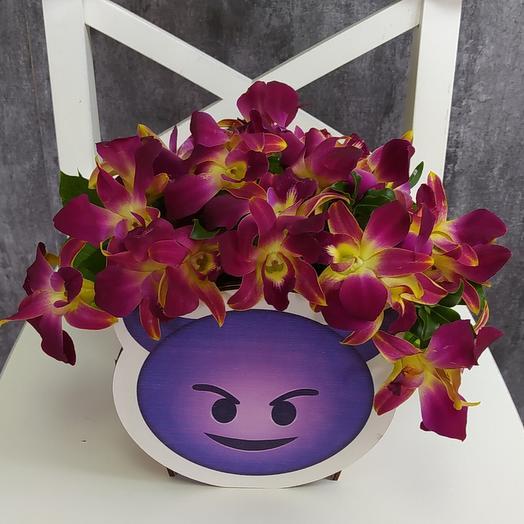 Сердитые орхидеи