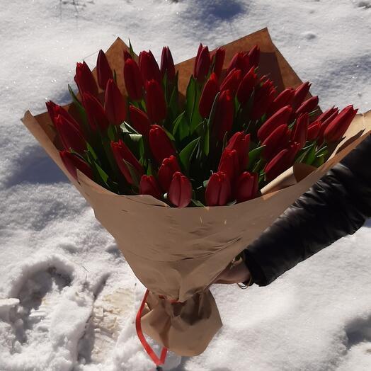 Красные тюльпаны 51 шт