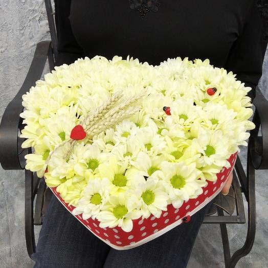 Ромашковое сердце: букеты цветов на заказ Flowwow
