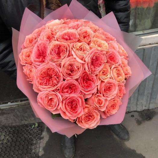 Пионовидные Розы в дизайнерской упаковке 51 Шт: букеты цветов на заказ Flowwow