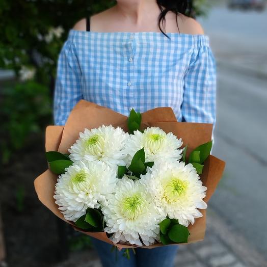 Безе и лайм⚪ хризантемы одноголовые белые