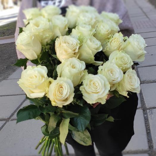 25 белых крупных роз сорта Мондиаль