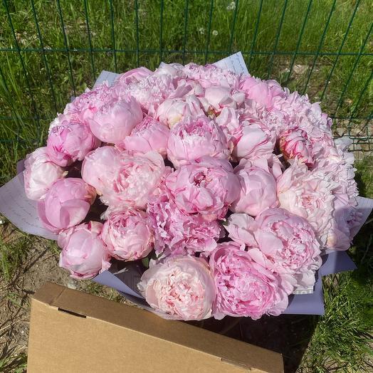 Моно букет из 45 пионов: букеты цветов на заказ Flowwow