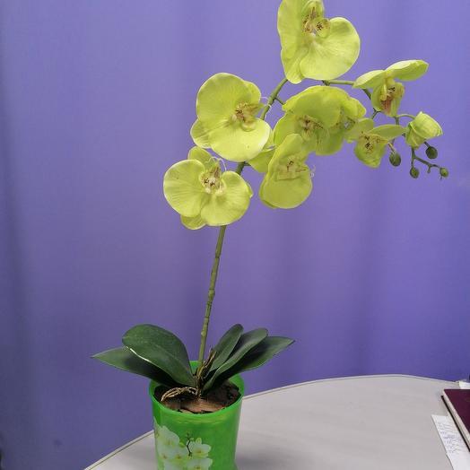 Силиконовая орхидея