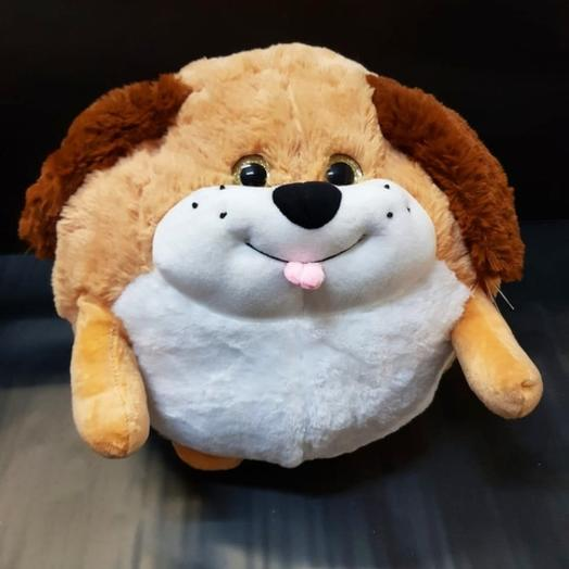 собака шар