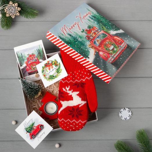 """Подарочный набор """"Merry Xmas"""" варежки р-р 19 и акс (4 предм)"""