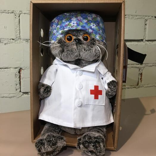Кот Басик Весёлый доктор