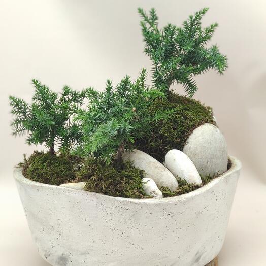 "Сад ""Белые скалы"""