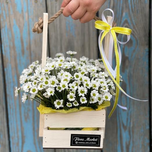 Деревянный ящик с ромашковидной хризантемой