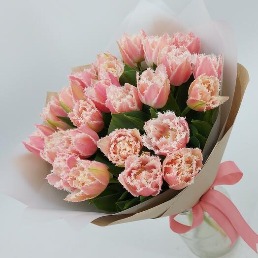 Тюльпаны QueensLand 25