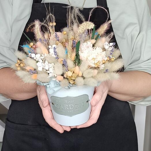 Сухоцветы в кашпо