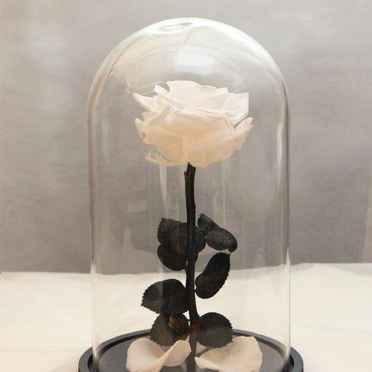 Роза в колбе RozaRose Медиум Белая