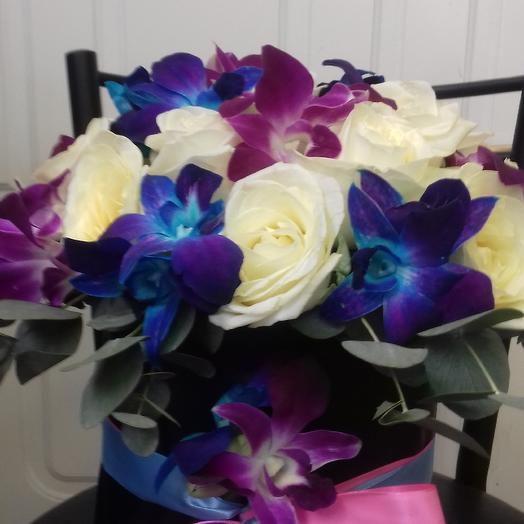 Коробка Колибри: букеты цветов на заказ Flowwow