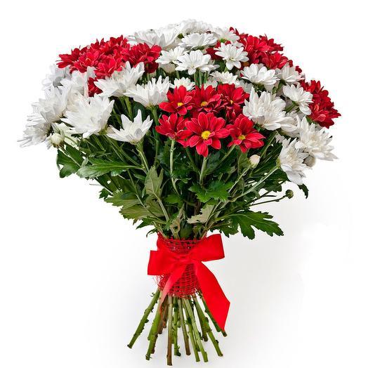 Хризантема кустовая микс: букеты цветов на заказ Flowwow