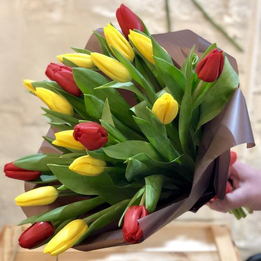 19 Tulip Mix