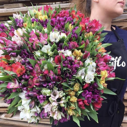 Стойкие альстромерии: букеты цветов на заказ Flowwow
